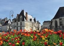 MUSÉE DE L'HÔTEL DE VILLE - Amboise